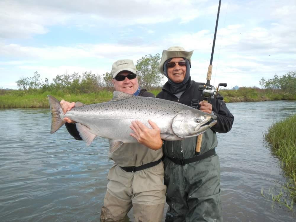 Togiak River King Salmon landed at Mission Lodge in Bristol Bay Alaska